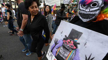 iHeartPride - 'The Babadook' Reaches New Gay Icon Status With Pride-Themed Blu-Ray