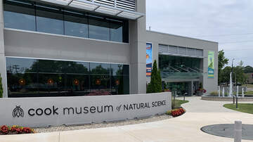 Tennessee Valley News - Cook Museum of Natural Science to open Friday in Decatur
