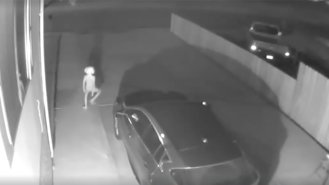 Creature Like 'Dobby The Elf' Captured On Home Security Camera