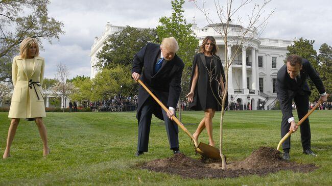 The Trump-Macron friendship tree is dead
