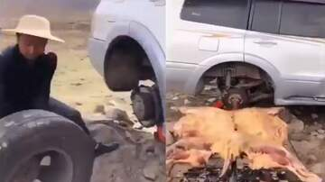 Michael Berry - Most Redneck Thing Done By An Asian: Guy Roasts Whole Yak Using Disc On SUV