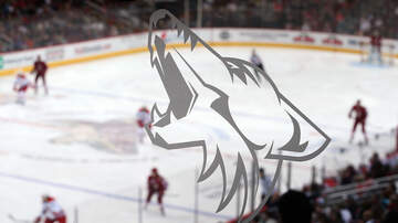 The Drive - Are the Coyotes About to Get a Dream Owner?
