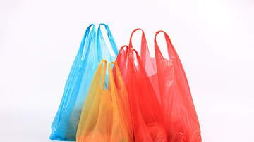 Florida News - Town Of Palm Beach Reverses Plastic Bag Ban