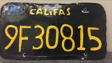 Josh Reno - California guy busted for a DUI and meth possession with fake license plate