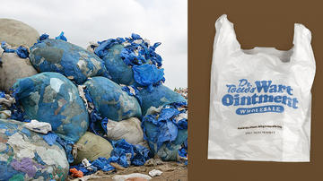 Weird, Odd and Bizarre News - Supermarket Shames People With Embarrassing Plastic Bags To Fight Pollution