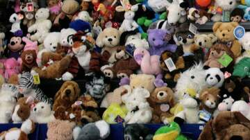 Chris Marino - 7-Year-Old Has Raised Over $18,000 to Buy Stuffed Animals for Sick Children