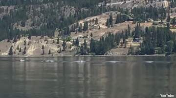 Coast to Coast AM with George Noory - Video: Ogopogo Caught on Film?