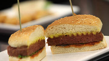 The Bus Driver - Food News: Most Meat In 2040 Not From Animals