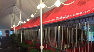 None - Clydesdales in town today from 10-3 at Brewery Products in York.