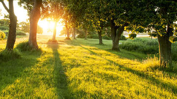 Courtney Lane - How Nature Can Improve Your Health