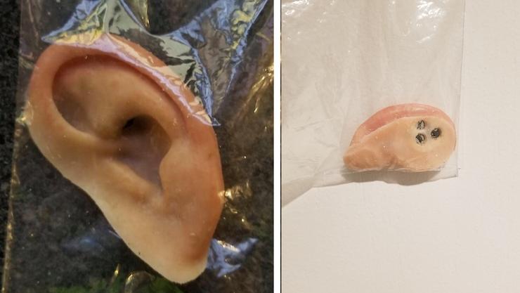 prosthetic ear found in southwest florida