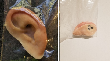 Weird, Odd and Bizarre News - Listen Up! Police Looking For Owner of Prosthetic Ear Found on Beach