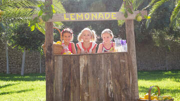 Toby Knapp - ILLEGAL: Is your KID running an ILLEGAL Lemonade Selling Operation?!