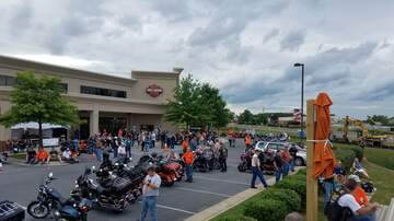 Photos - Curves to Cores Hog Rally Parade