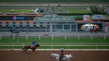 Local News - Another Horse Dies at Santa Anita