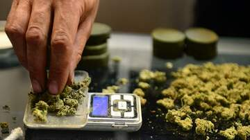 The Joe Pags Show - University Of Maryland Offers Nation's First Masters In Pot