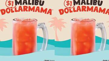 Suzette - Applebee's Has Launched A Malibu Coconut Rum Drink For Only $1