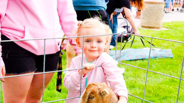 Photos - PHOTOS: Kidz Fest 2019 Gallery 1
