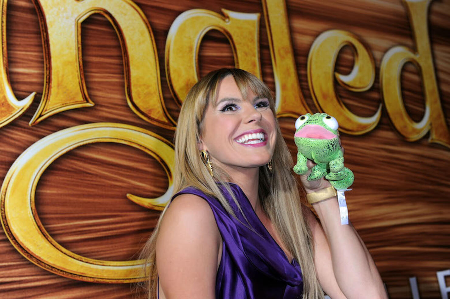 """Walt Disney Pictures Presents The Premiere Of """"Tangled"""" - Red Carpet"""