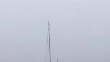Lee Phillips - Did you see the lightning hit this sailboat? HOLY COW!!
