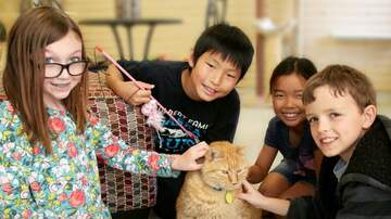 The Afternoon News with Kitty O'Neal - Sacramento SPCA's Camp Kindness
