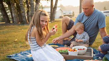 None - Family Day Picnic