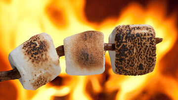 Allison - The Perfect Roasted/Toasted Marshmallow Debate Continues