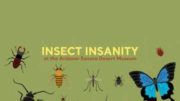 None - Win tickets to Insect Insanity!