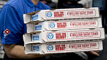 Rubi - Domino's Offering 50 Percent Off Pizzas
