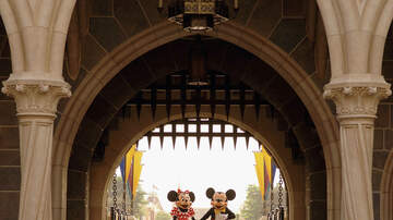 Todd Alan - One Mom Wants Childless Couples Banned From Disney