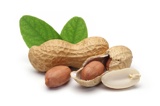 shelled peanuts and leaves- Getty Images