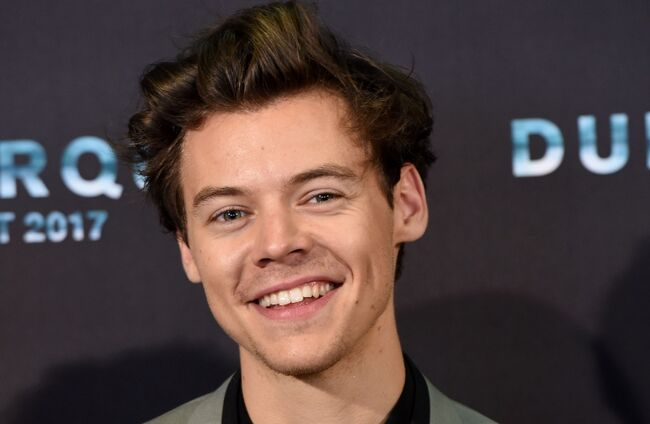 Harry Styles Rumored To Play Prince Eric In Disney's 'The Little Mermaid'