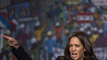 The Kuhner Report - Kamala Harris: Trump needs to go back where he came from