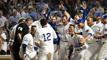 image for Cubs single-game tickets on sale starting February 21st