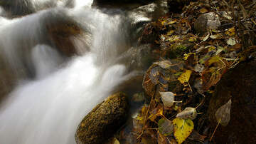 AJ - Officials:  Quit Pooping By The Stream in Big Cottonwood Canyon