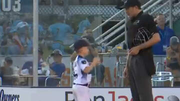 Weird News - Six-Year-Old Summer League Baseball Coach Flips Out After Umpire Ejects Him