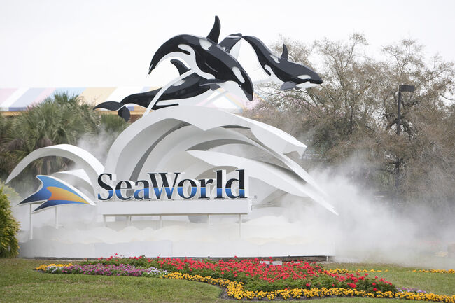 SeaWorld Extends Free Ticket Offer for Military Veterans