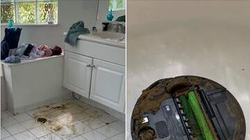 Crash & AJ - Roomba Runs Over Dog Poo, Then 'Cleans' The Rest Of The House