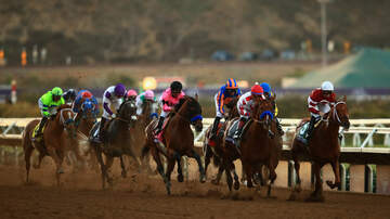 Local News - Two Horses Suffer Cervical Fractures, Die at Del Mar Race Track
