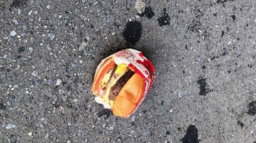 Weird News - New York City Man Finds Uneaten In-N-Out Burger In The Middle Of The Street