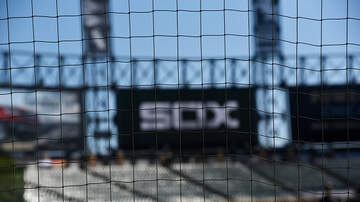 Cliff Notes on the News - Will Fans Go Nuts Over Baseball's Nets?