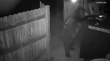 Jessica -  VIDEO: Bear With Munchies Tries To Steal Entire Dumpster