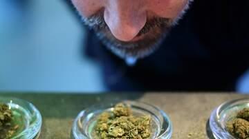 J Will Jamboree - Legislation Up in Smoke: New York State decriminalizing Marijuana