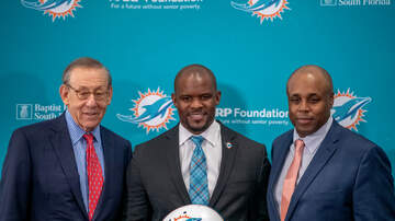 Mike 'Lubie' Lubitz - Lubies Law: Miami Dolphins ALWAYS Amaze!