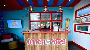 Lee Callahan - Say It Ain't So! Otter Pops Are Brown