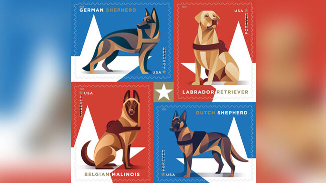 Post Office Releases Forever Stamps That Honor Military Dogs