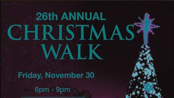 None - Mount Dora Christmas Walk 11/30