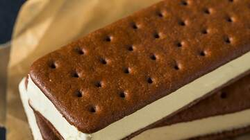 EJs Page - DANG, I MISSED ICE CREAM SANDWICH DAY