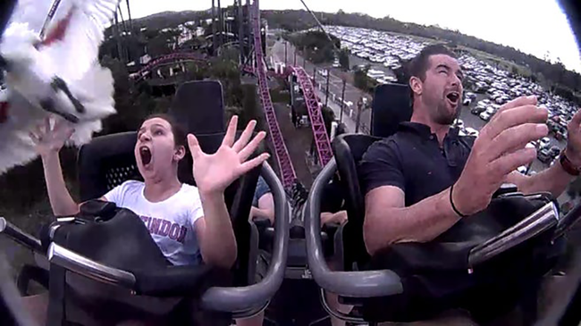 Girl Hit By Bird While Riding Roller Coaster