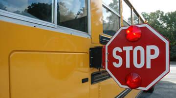 Amanda Flores - When do you stop for school bus?